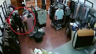 этой странице видео он лайн с камер наблюдения краснодара обворожительные актрисы