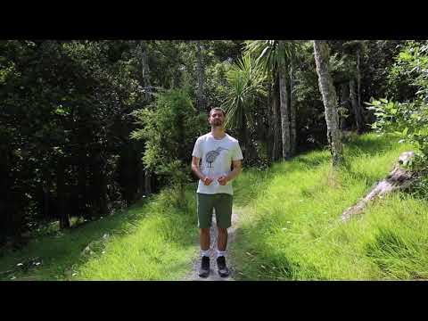 Tristan Intro Tawharanui