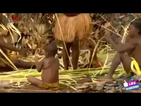 สารคดีเผ่าโปรตูรู ลุ่มแม่น้ำอเมซอน วิถึชีวิต การหาอาหาร พิธีกรรม #4 #tribeslife #tribeslife