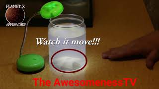 #Home Alchemy-Man creates Monster in his basement with Sperm and Chicken Egg!!