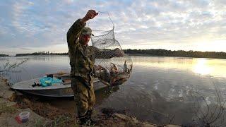 Рыбалка на донку Эта приманка сделала рыбалку