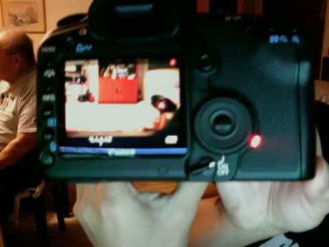Defective Canon 5D MkII camera sensor