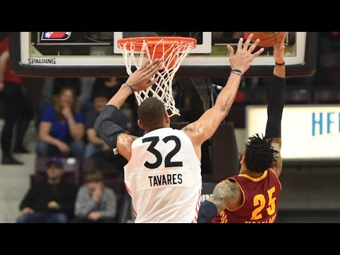 Edy Tavares 2016-17 NBA D-League Defensive Player of the Year Highlights
