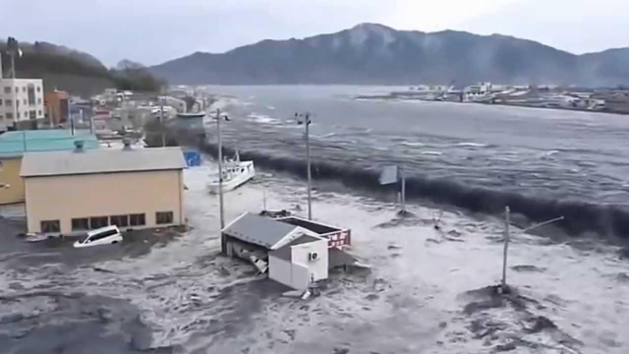 цунами можно ли выжить