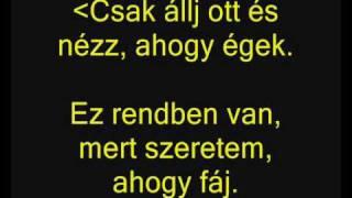 Eminem ft. Rihanna - I Love The Way You Lie (Szeretem, ahogy hazudsz) magyarul