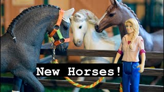 New Horses at Silver Star Stables! - Short Schleich Movie