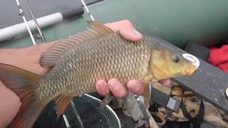 Ловля рыбы бортовыми удочками #взрослыеидети