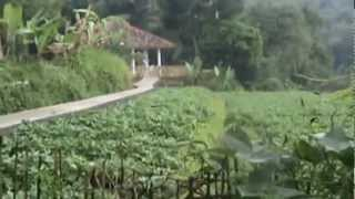 Degung Sunda Ayun Ambing MPEG_.mpg