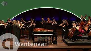 Wantenaar: Nachtmuziek - Amsterdam Sinfonietta led by Candida Thompson - Live Concert HD