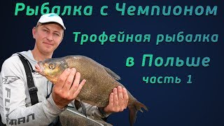Рыбалка с чемпионом! Фидерная ловля трофейного леща в Польше!