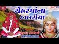 Vishnu Maldhari | Chehar Maa Na Halariya | Audio Jukebox | Vihanu Maldhari Halariya 2018