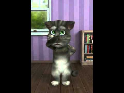 kucing menyumpah dalam bahasa kelantan