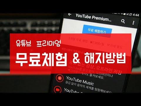 유튜브 프리미엄 1개월 무료체험 신청 및 해지 방법