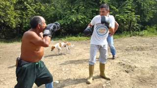 Boxeo callejero el gordo vs pepita la revancha