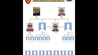 Finalizohet me sukses operacioni Free TAXI - Policia e Tiranës