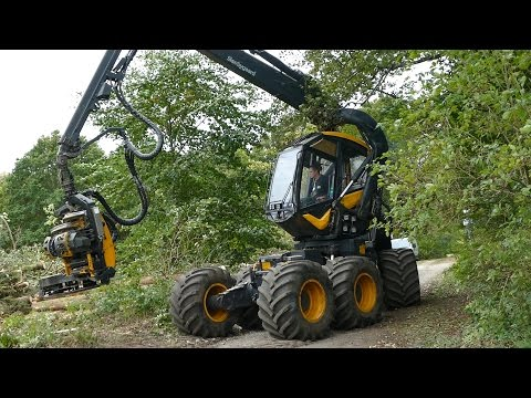 Ponsse Scorpion King | Cutting Down Trees | Forestry Equipment | Skovbygaard
