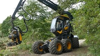 Video Ponsse Scorpion King | Cutting Down Trees | Forestry Equipment | Skovbygaard download MP3, 3GP, MP4, WEBM, AVI, FLV November 2017