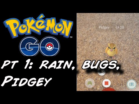 Let's Play | Pokemon Go! | Forest | Rain, Bugs, Pidgey