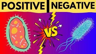 Gram Positive vs Gram Negative Bacteria - Gram Staining Technique