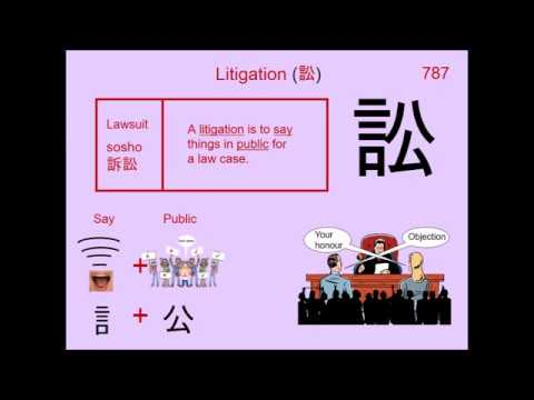 Chinese Character 訟 Litigation