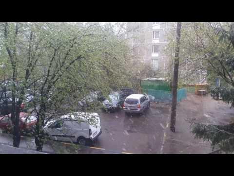 Погода в Москве 08.05.2017