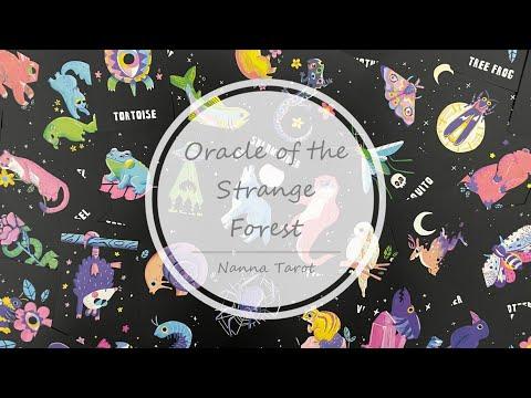 開箱  奇異森林神諭卡 • Oracle of the Strange Forest // Nanna Tarot