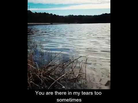 Poem// You Left But You Are Still There
