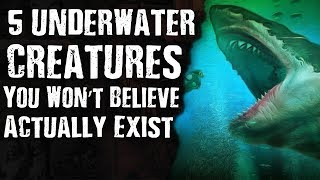 5 Underwater CREATURES You Won't Believe Actually Exist