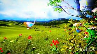 Beautiful Short clip Of Nature Video By Prasenjeet Meshram