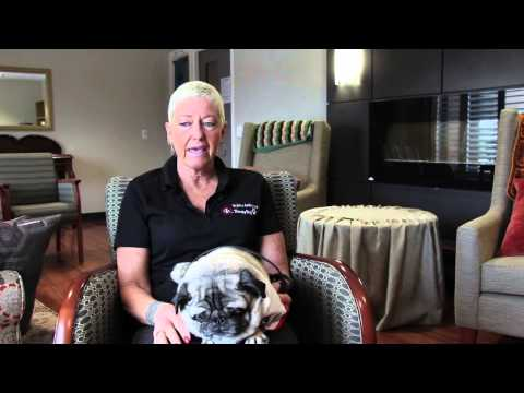 Tracey Silverthorn and Igor Pug Dog of St. John Ambulance Therapy Dogs Visit Hospice