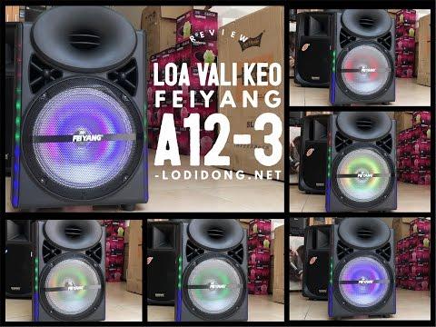Review Loa Di Động Đèn Nhịp Theo Bass Feiyang A12-3