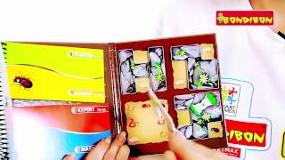 Логическая игра SmartGames - Деловые жуки(Расположи 4 магнитные детали на игровой доске таким образом, чтобы только указанные в задании насекомые..., 2013-07-22T09:45:00.000Z)