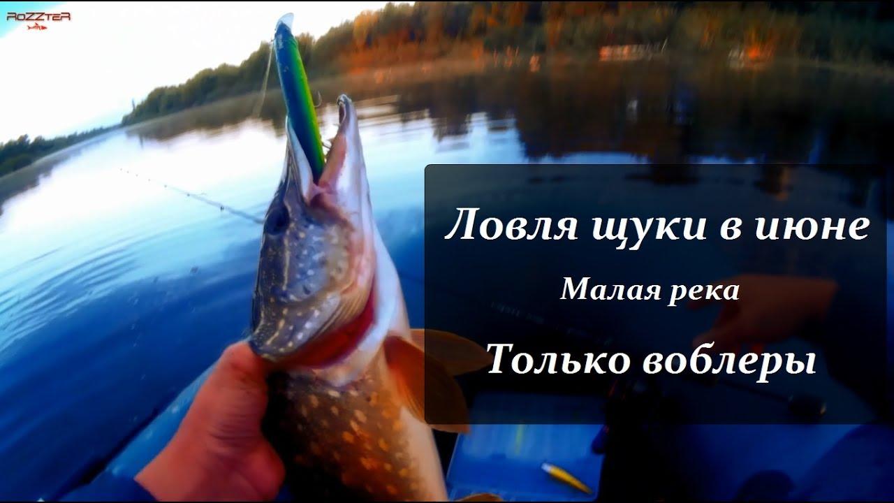 лучшие воблеры для ловли щуки на малых реках
