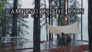 4K 우중캠핑 - 타프 빗소리, 자연의 소리, 국수 한…