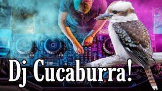 La Cucaburra DJ 🎶🎙🕴Songs of Paradise 🎼 un ave mix ☺