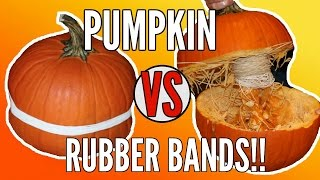 EXPLODING PUMPKIN CHALLENGE | Pumpkin vs  Rubber Bands!!