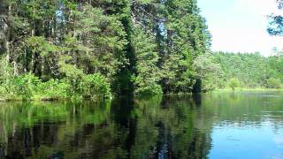 Oswego River Kayak Trip, NJ Pine Barrens