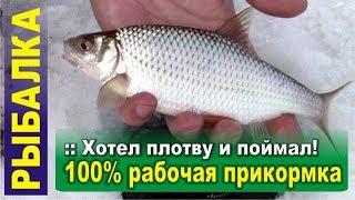 За крупной плотвой Зимняя рыбалка