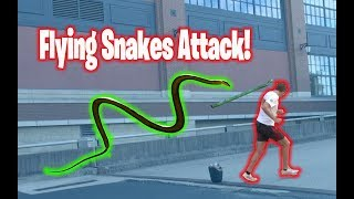 Flying Snakes Attack People in Cincinnati! - Public Prank