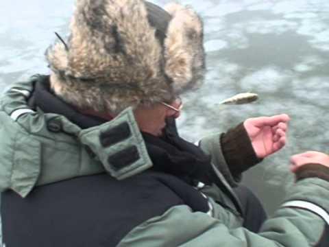 Зимняя рыбалка. Астрахань. Алимовский плес 2015