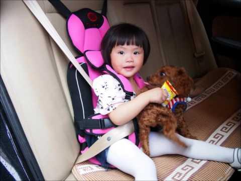 Sabuk pengaman bayi Mobil Murah Harga 170 Ribu