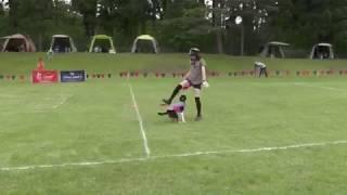 ボーダーコリー ラムシナモン 1歳9ヶ月 NDA長岡大会にて 前にやった同...