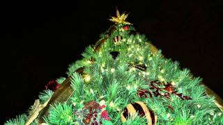 Ft. Myers Christmas Tree Lighting by Trimmer's Holiday Decor Inc.