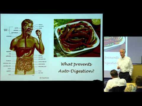 """Autodigestion: Digestive Enzymes on the Prowl"" - Geert W. Schmid-Schöenbein, MD"
