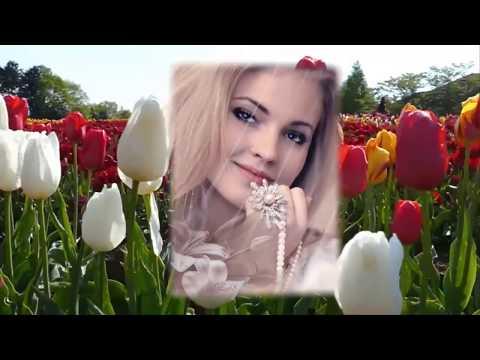 А я несу тебе цветы   Михаил Кармаш