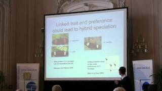 Speciation 2010: Chris Jiggins - Routes to hybrid speciation in Heliconius butterflies