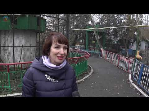 lgikvideo: зооуголок