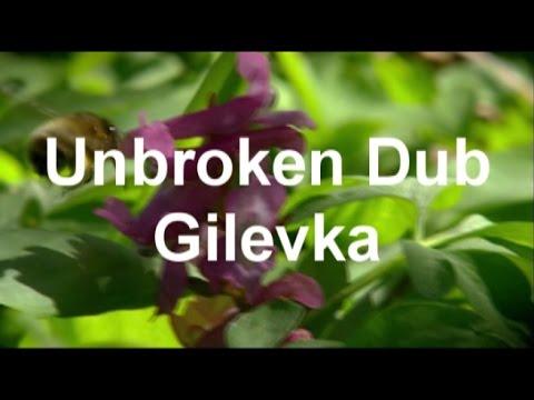 Unbroken Dub - Gilevka