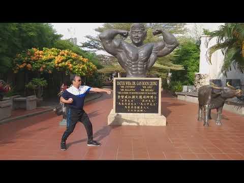 龍形-Michael Chan(74)-龍形基本拳-馬來西亞-2018/11/26
