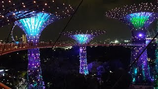 Singapore Night Walk. Supertrees and OCBC Skyway at Gardens by the Bay